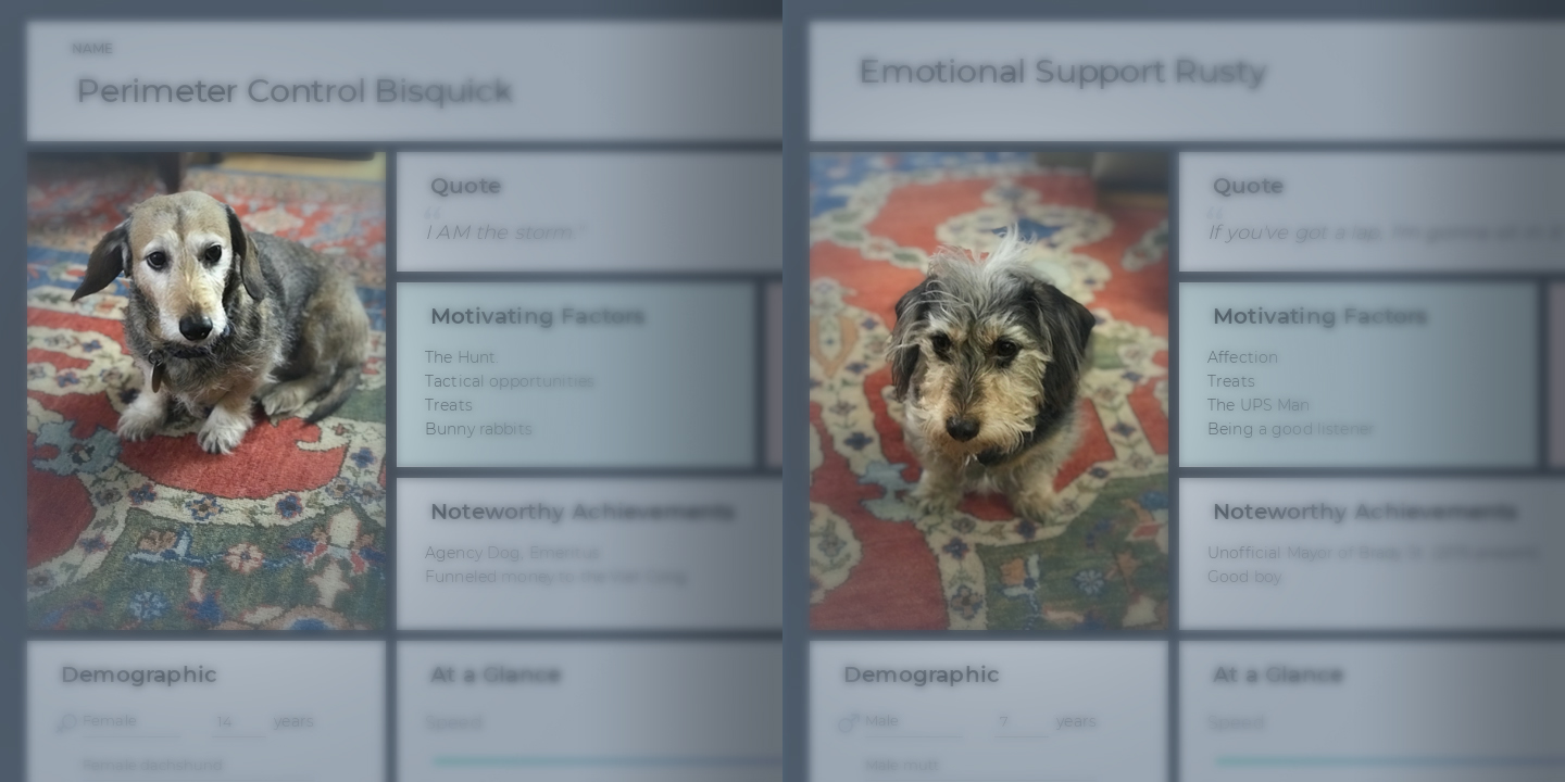 Now for a Real Treat: Personadogs! Marketing Personas for Dogs